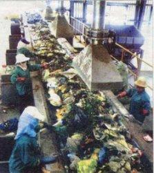 В Оренбурге корейцы построят мусороперерабатывающий завод
