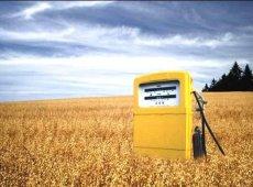 Рынок биотоплива в Украине