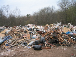 Депутаты предлагают передать регионам полномочия по утилизации отходов