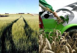 Казахстан: парламент принял закон о госрегулировании производства и оборота биотоплива