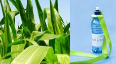 BCC прогнозирует быстрый рост сектора биопластмасс