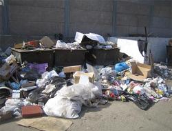 Власти Москвы предлагают решать проблему мусора вместе с Подмосковьем