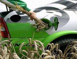 Украина обещает потреблять 250 тыс. тонн биотоплива в год