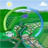 Обзор рынка альтернативной энергетики в2009году