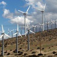 На Ямале могут появиться датские ветряки
