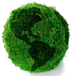 E&Y: Китай стал лидером на рынке возобновляемых энергоресурсов