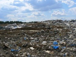 Иркутск перерабатывает не более 1% твердых бытовых отходов
