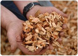 США: цены на древесную биомассу достигли своего минимума в четвертом квартале 2010 года