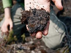 «Торф– это биотопливо»