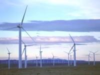 Siemens построит парк ветряков в Литве
