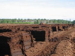 В России открыт современный завод по изготовлению топливных торфяных брикетов