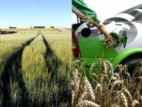 К 2050 году биотопливо займет 80% рынка топлив ЕС