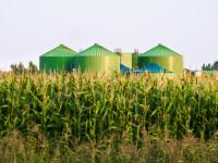 Немецкая компания планирует открыть в Воронежской области производство биогаза