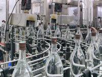 Украинские спиртзаводы будут производить биотопливо