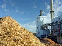Французы хотят инвестировать 100 млн евро в биомассу растений