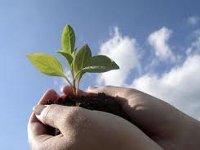 Google продвигает новый эко-сайт Recyclebank