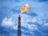 WWF предлагает отменить нулевую ставку НДПИ для попутных нефтяных газов