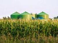 Доля биогазовой промышленности будет расти