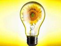 Датские компании реализуют в РФ проект по энергосбережению в школах и больницах