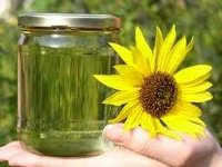 Украина урегулирует рынок биотоплива