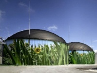 Биогазовые установки могли стать причиной эпидемии кишечной палочки в Европе