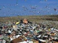 Ростехнологии и ЕР создают систему утилизации отходов