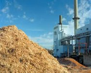 В Эстонии построят крупнейшую электростанцию на биомассе