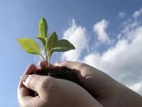 НКРЭ стимулирует привлечение инвестиций в альтернативную энергетику