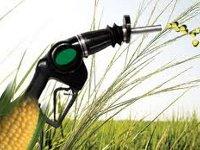 Petrobras за пять лет вложит 2,5 млрд долл. в производство биотоплива