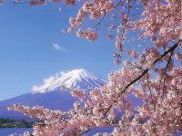 """Парламент Японии одобрил 20-летнюю программу поддержки """"зеленой"""" энергетики"""