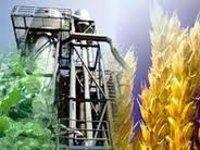 В Смоленской области будет построен завод по производству биоэтанола