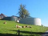 Более 50 электростанций на биогазе построит Газэнергострой