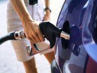 В Украине началось формирование отрасли производства моторных видов биотоплива
