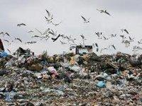 Иркутская область направит 2,7 млрд руб на утилизацию отходов