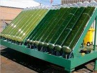 Альтернативные источники энергии. Биотопливо 2012