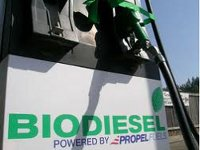 Глобальный рост производства биотоплива может замедлиться
