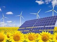 BP прогнозирует четырехкратное увеличение зеленой энергии к 2030 году