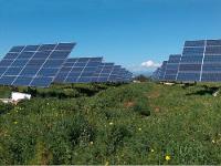 Глава НПП «Квант» предсказал будущее солнечной энергетики