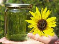 На Украине может быть введена норма 5%-го содержания биоэтанола в топливе