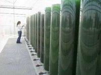 В Финляндии создаётся первая общенациональная сеть биозаводов