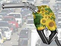 На Украине принят закон о производстве и потреблении биотоплива