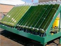 Китай заинтересован в украинском рынке биотоплива