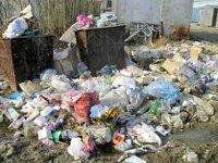 В Санкт-Петербурге делают ставку на термические методы утилизации отходов
