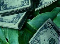 Североамериканский рынок венчурных инвестиций в cleantech в 2008 году достиг отметки в 5,8 млрд. долл.