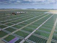 DuPont построит в Айове крупнейший в мире завод по производству биоэтанола