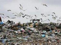Росприроднадзор: в России выгоднее сжигать мусор, чем отбирать вторсырье