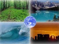 Минприроды РФ будет сотрудничать с венчурным бизнесом по экологии