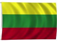 К 2020 году 23% электроэнергии в Литве будут добывать из альтернативных источников