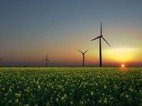 Ветроэлектростанция в Запорожской области