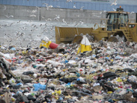 Переработка отходов в Москве